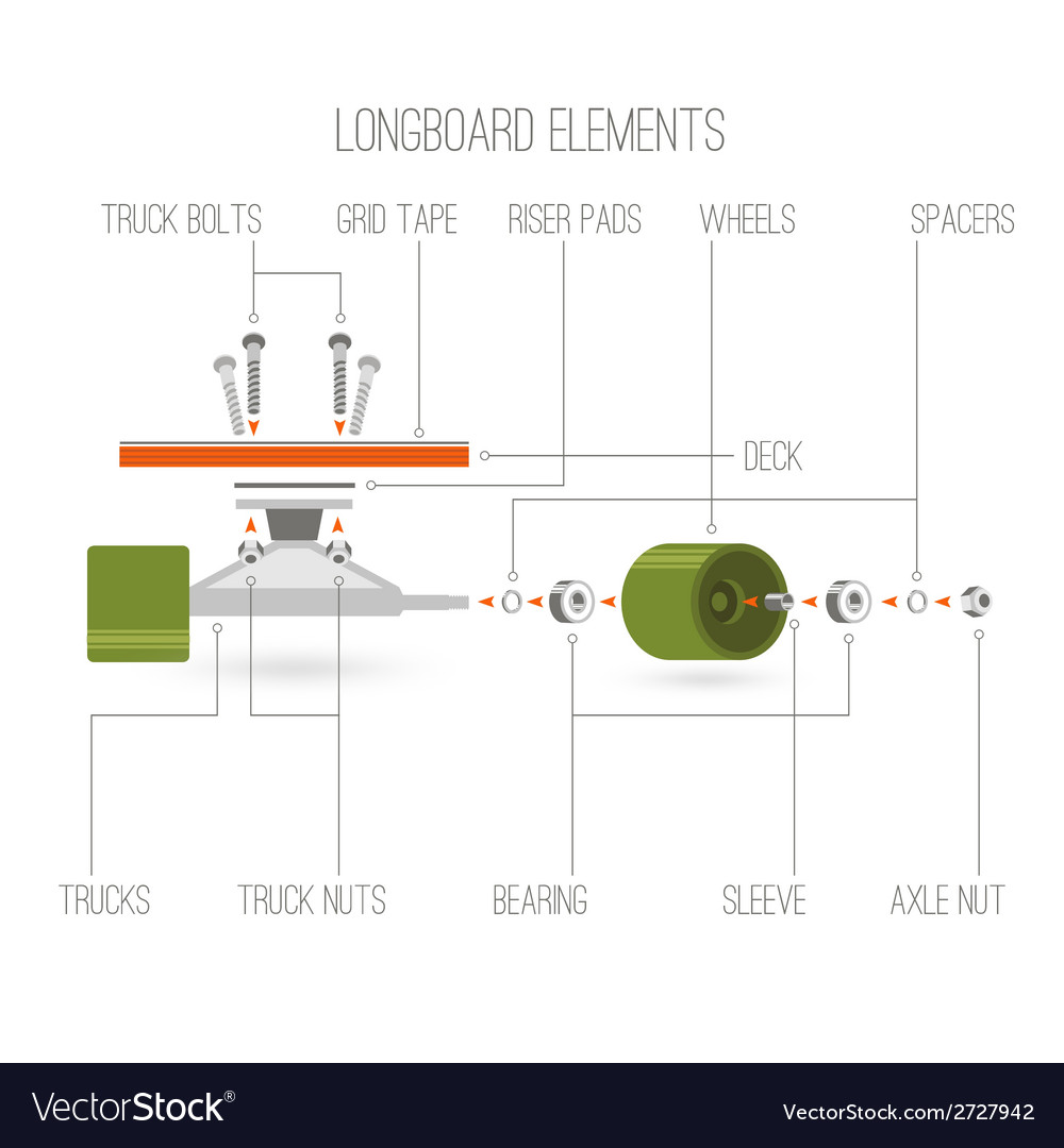 Longboard elements infographic vector | Price: 1 Credit (USD $1)