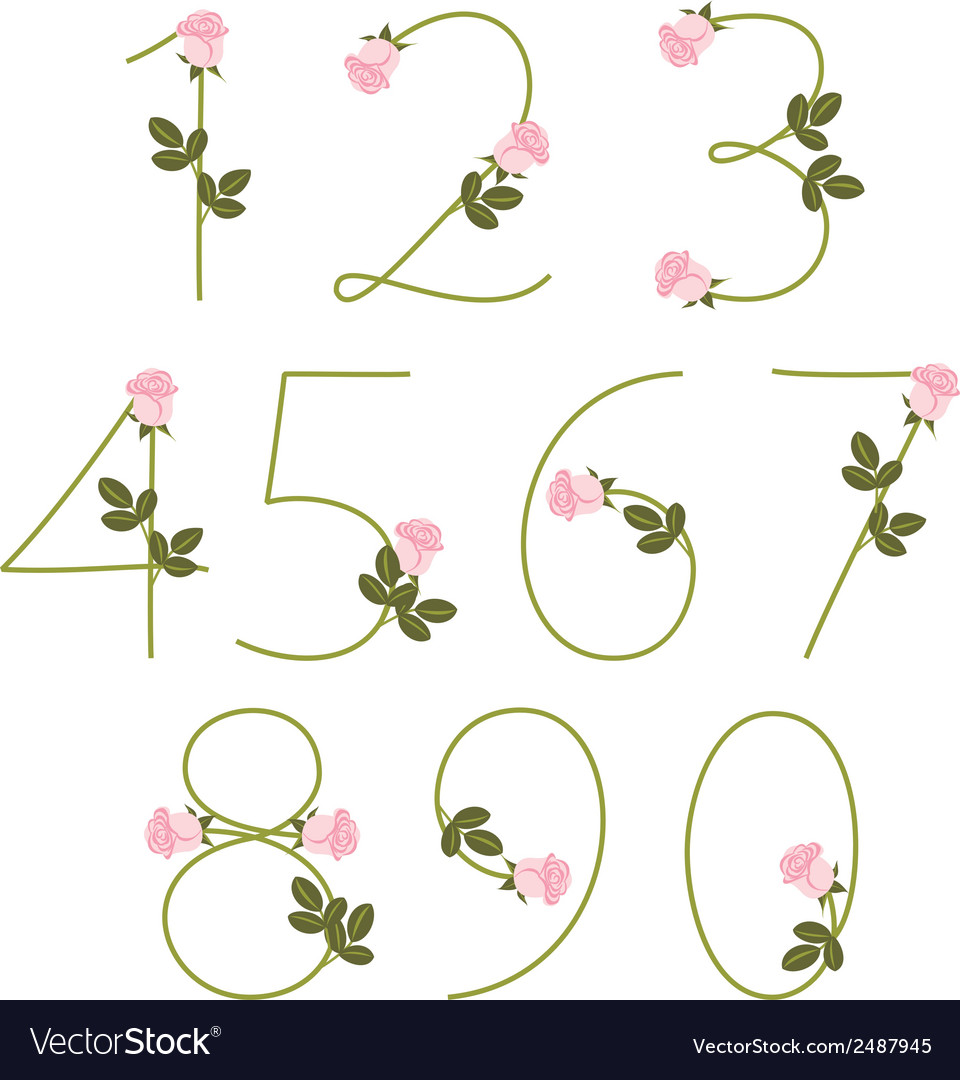 Floral alphabet pink roses numbers from 0 to 9 vector | Price: 1 Credit (USD $1)