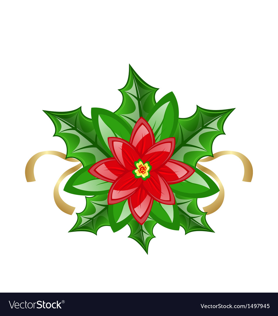 Flower poinsettia for christmas decoration vector | Price: 1 Credit (USD $1)