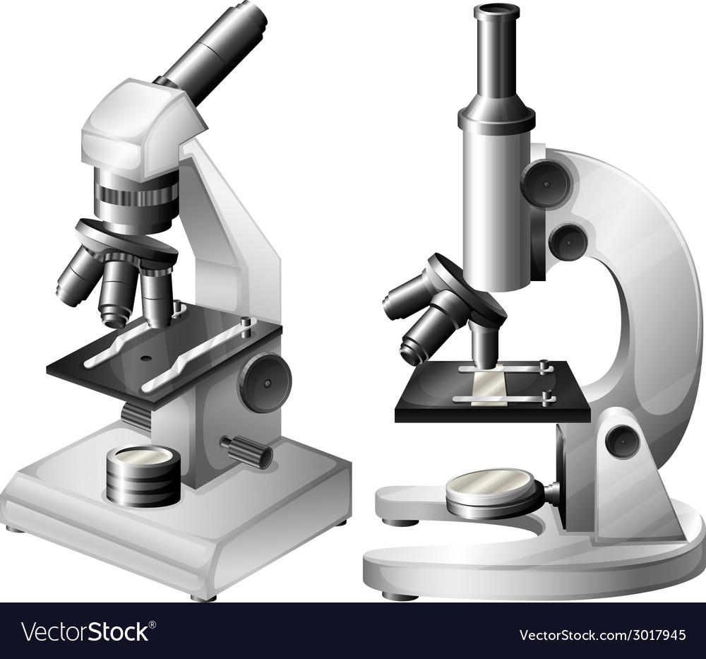 Microscopes vector | Price: 1 Credit (USD $1)