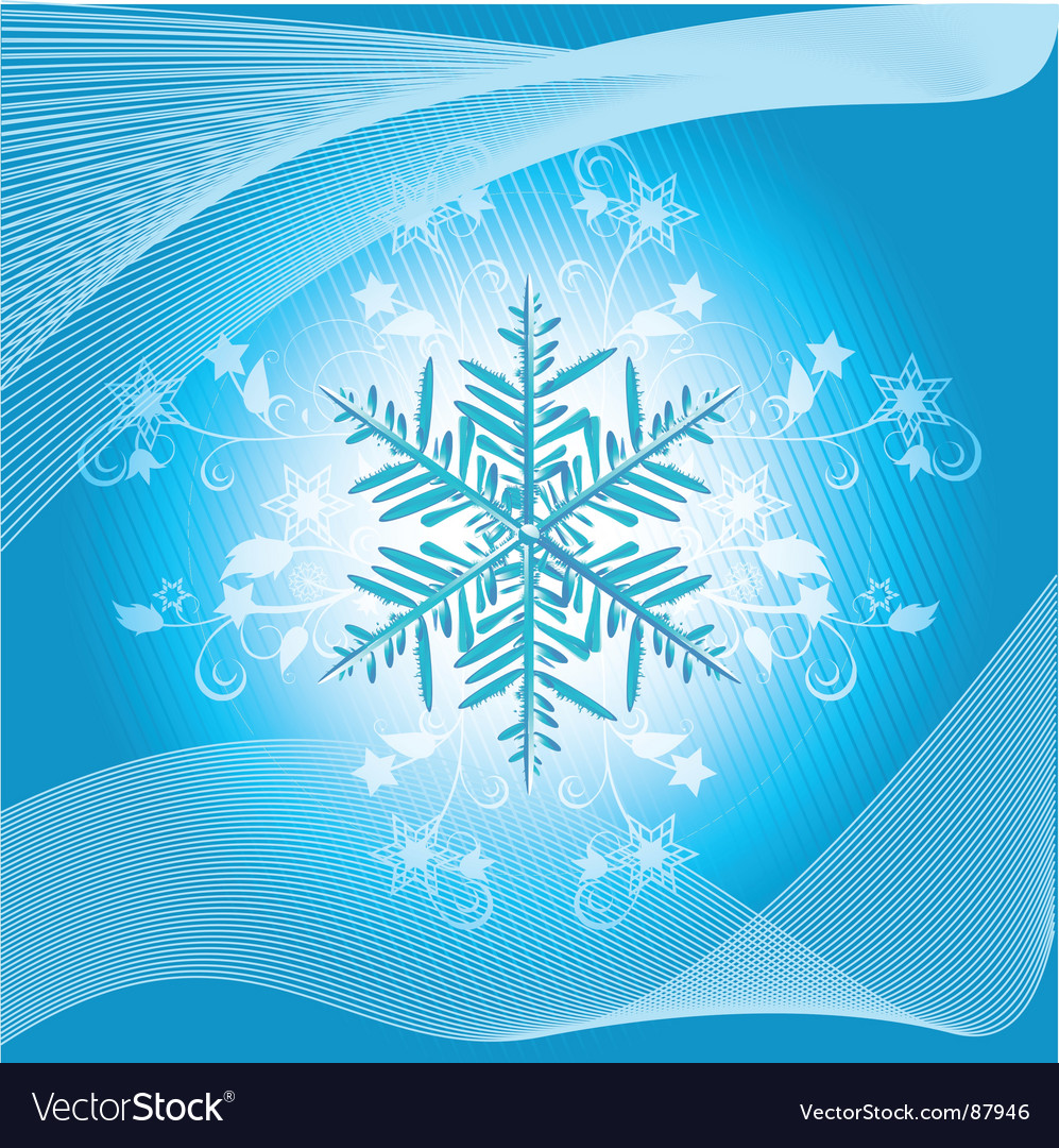 Winter snowflake and flourish vector | Price: 1 Credit (USD $1)