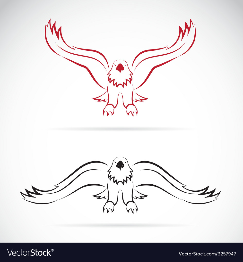 Eagles vector | Price: 1 Credit (USD $1)