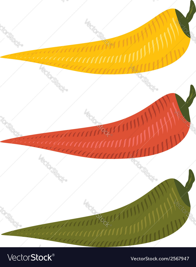 Three chili peppers vector | Price: 1 Credit (USD $1)