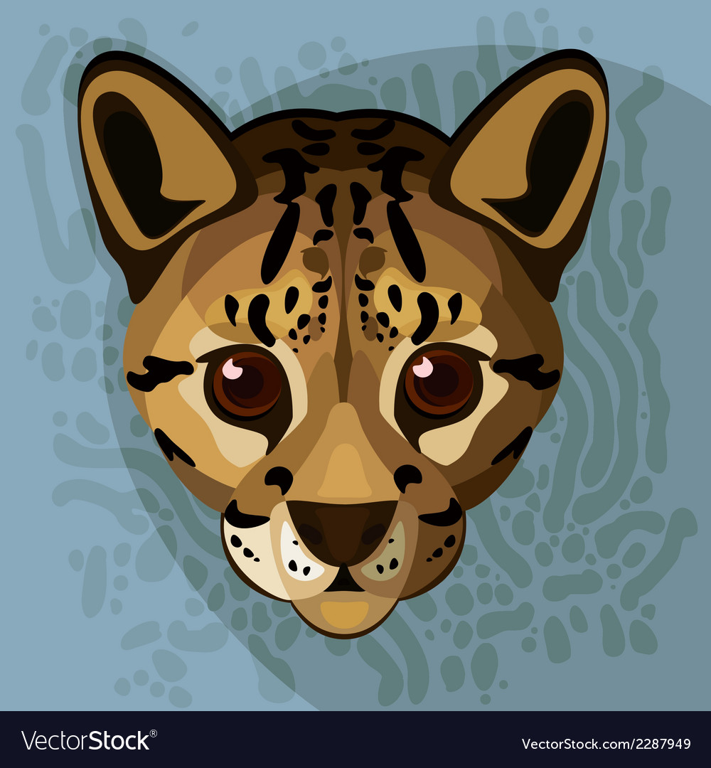 A of an ocelots face vector | Price: 1 Credit (USD $1)