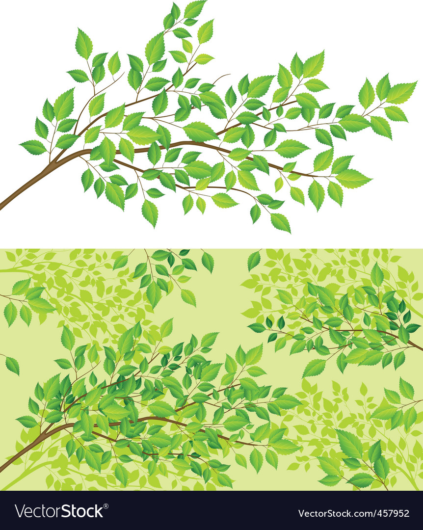 Branch tree with green leaf vector | Price: 1 Credit (USD $1)