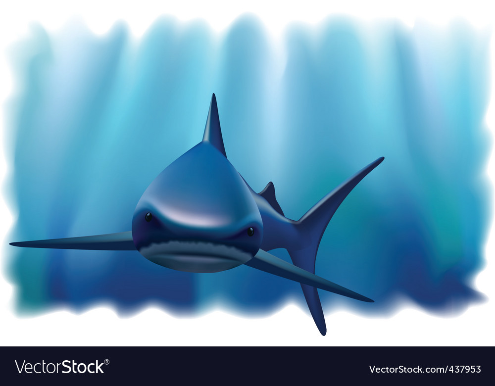 Shark in the ocean vector | Price: 1 Credit (USD $1)