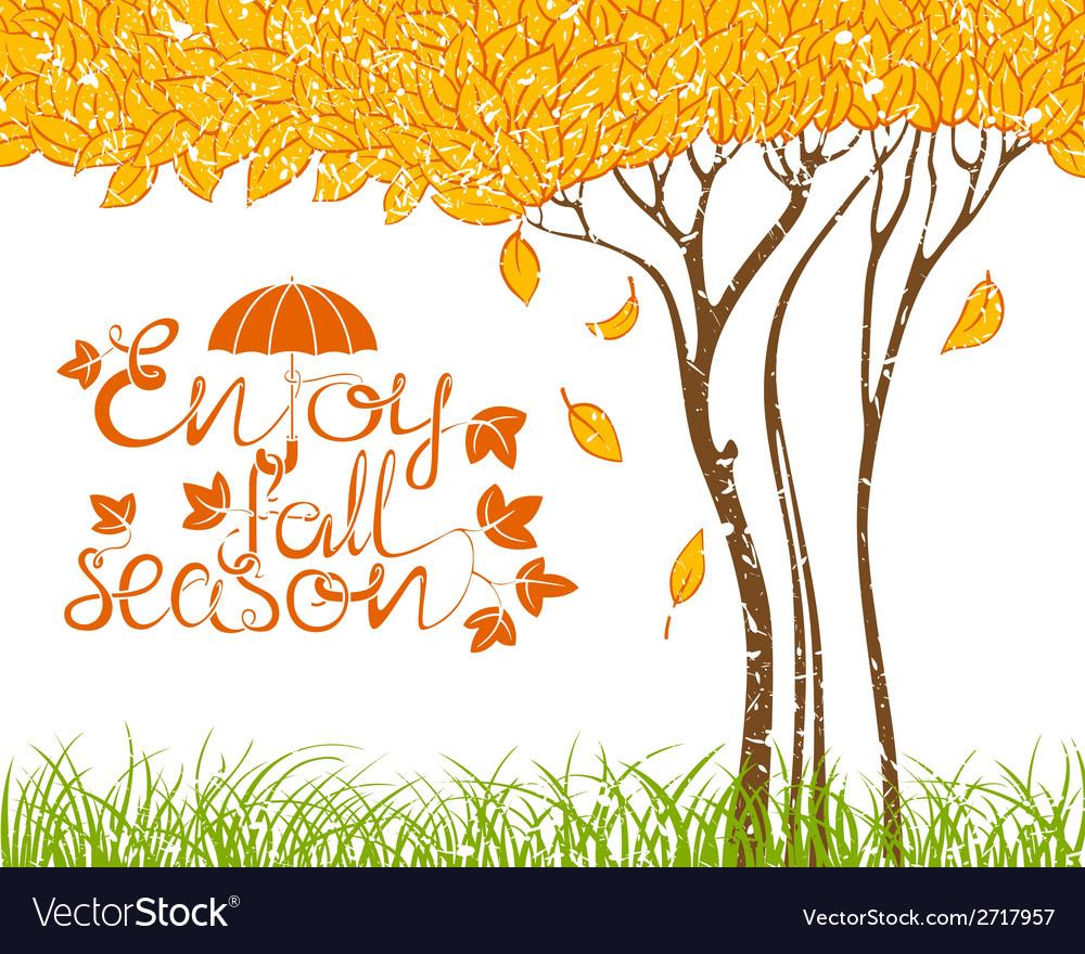 Fall tree vector   Price: 1 Credit (USD $1)