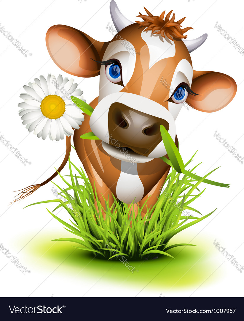Jersey cow in green grass vector | Price: 3 Credit (USD $3)