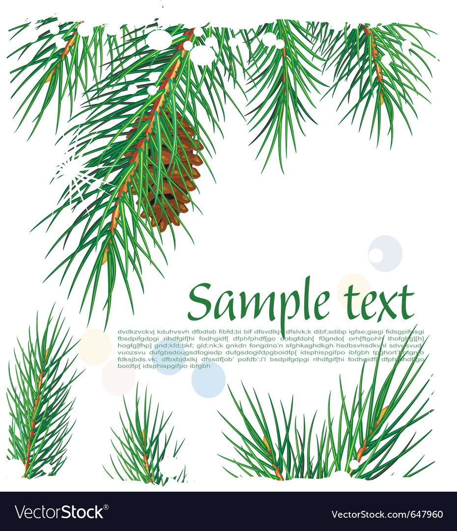 Framework with pine branches vector | Price: 1 Credit (USD $1)