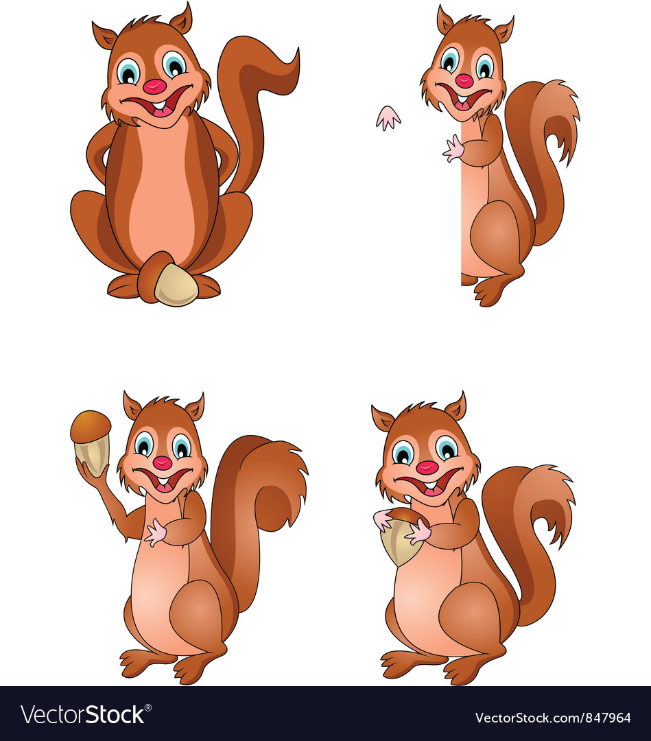 Squirrel collection vector | Price: 3 Credit (USD $3)
