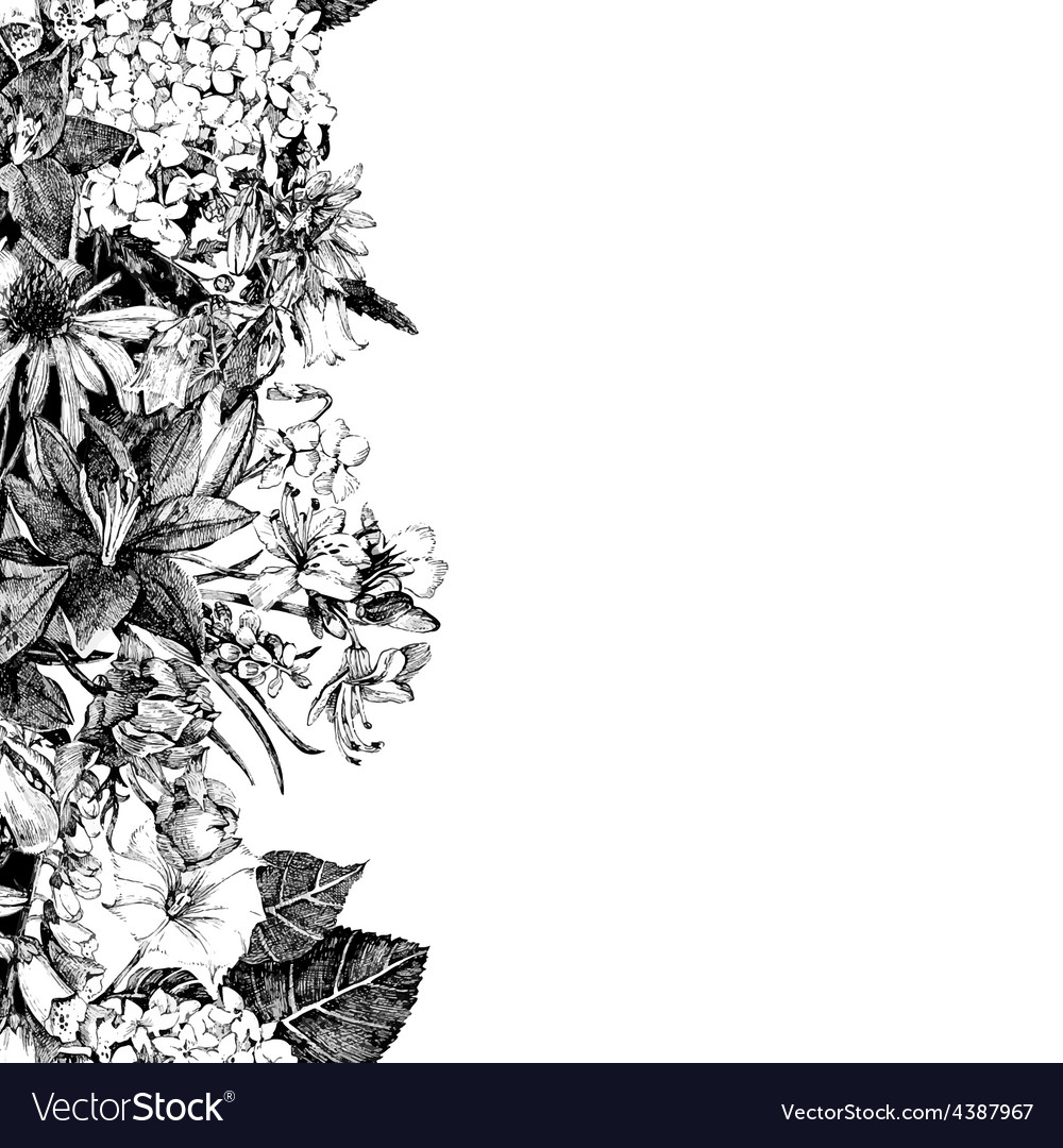 Hand drawn seamless floral border vector | Price: 1 Credit (USD $1)