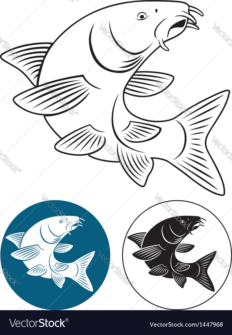 Fish barbel vector | Price: 1 Credit (USD $1)
