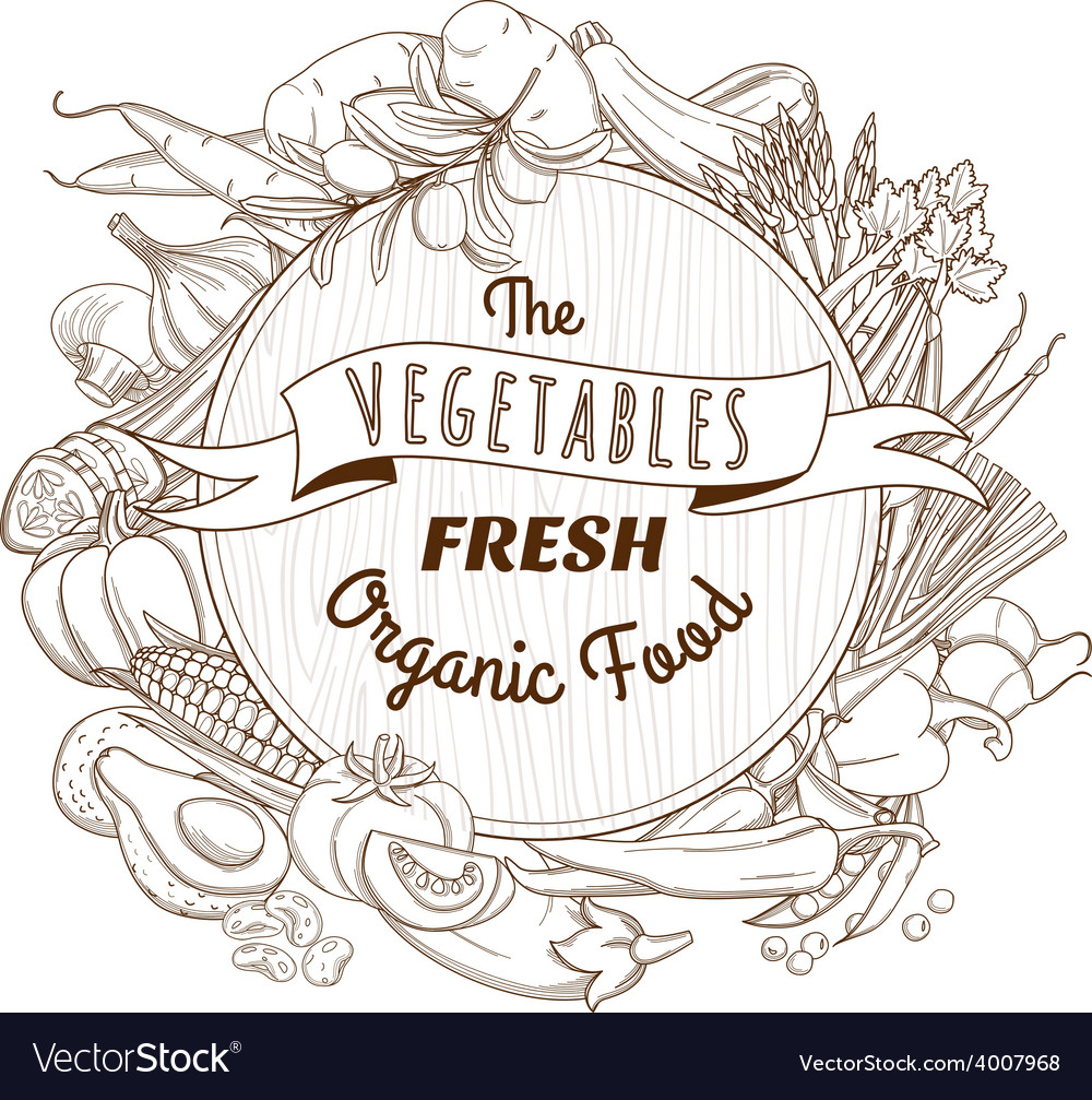 Outline hand drawn sketch vegetable wooden frame vector   Price: 1 Credit (USD $1)