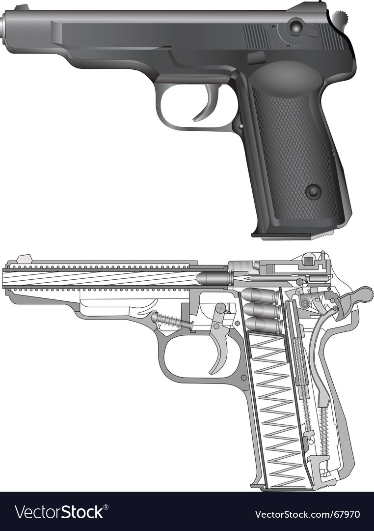 Cross section of a gun vector | Price: 1 Credit (USD $1)