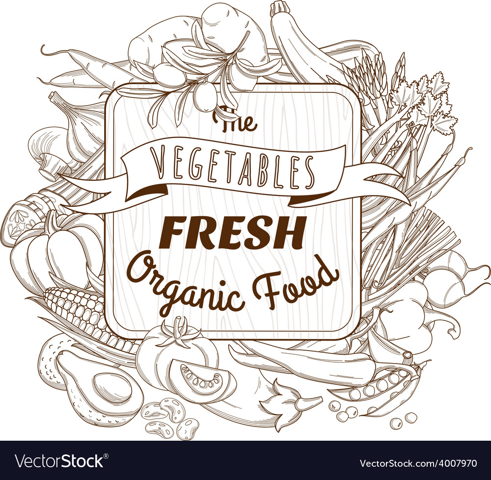 Outline hand drawn sketch vegetable wooden frame vector | Price: 1 Credit (USD $1)