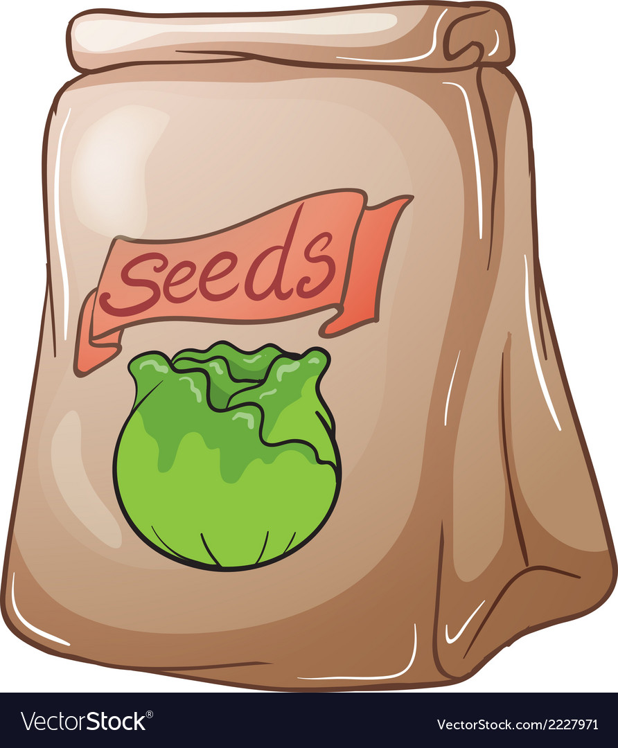 A paper pouch with seeds vector | Price: 1 Credit (USD $1)