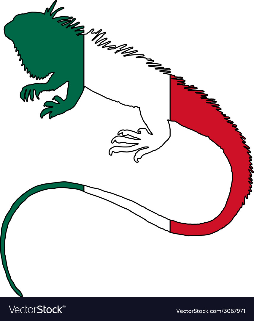 Iguana mexico vector | Price: 1 Credit (USD $1)