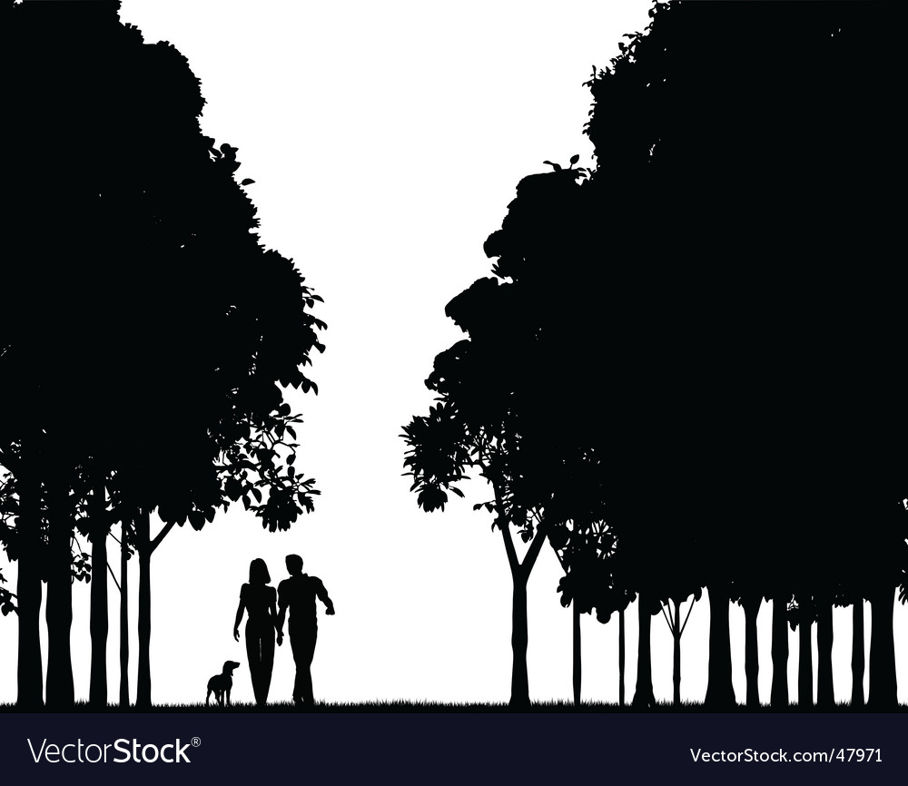 Woodland walk vector