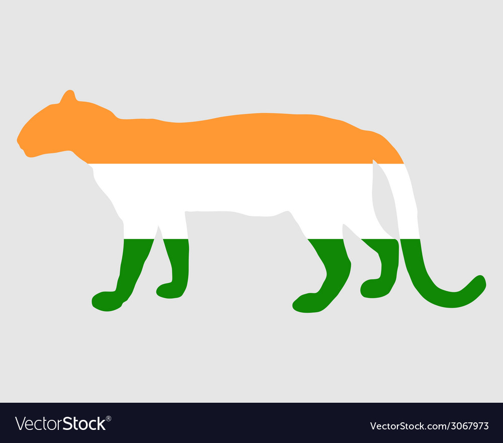 India leopard vector | Price: 1 Credit (USD $1)