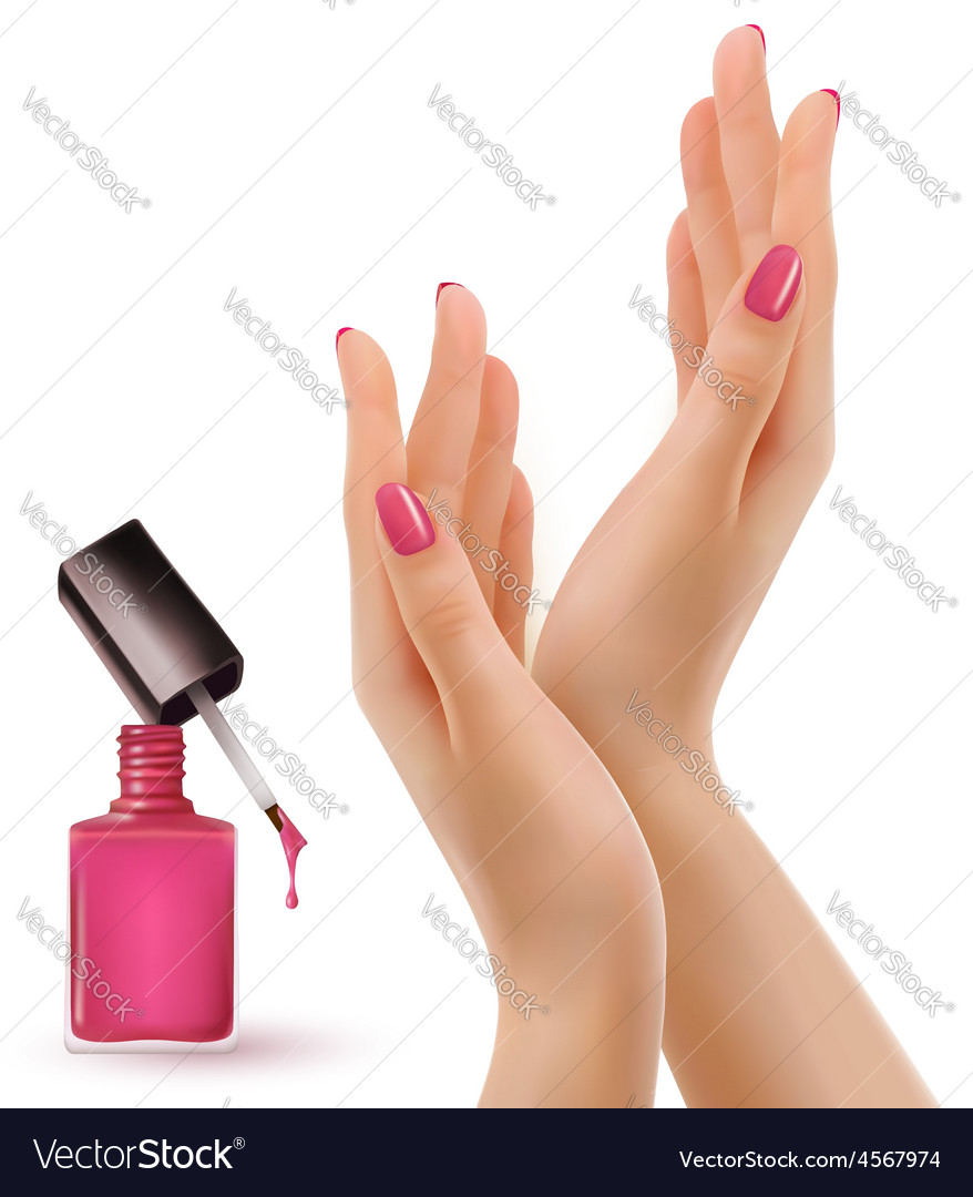Hands with pink polished nails nail polish bottle vector | Price: 3 Credit (USD $3)