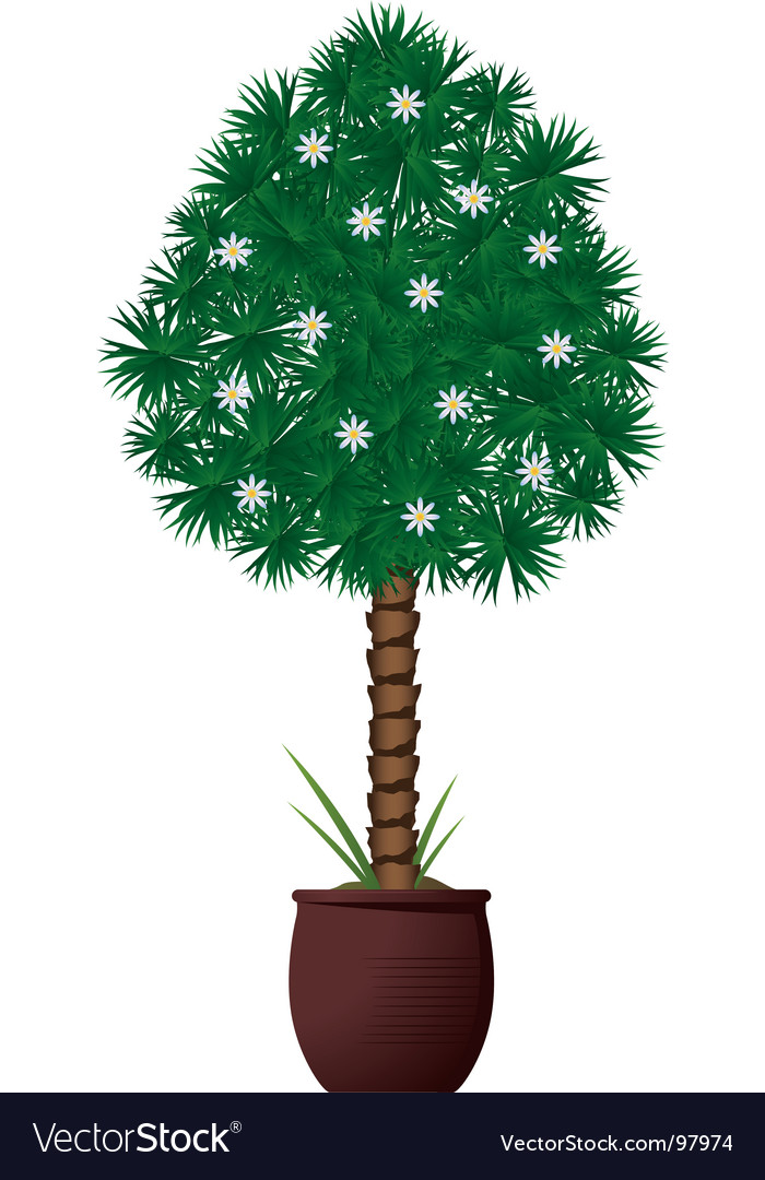 Interior plant vector | Price: 1 Credit (USD $1)