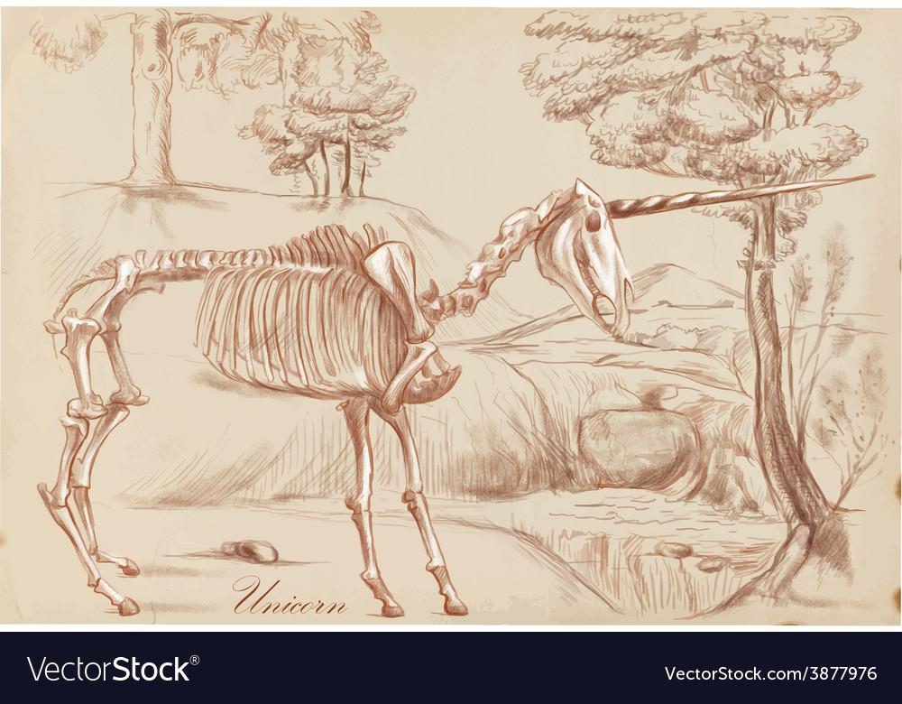 An hand drawn unicorn vector   Price: 1 Credit (USD $1)