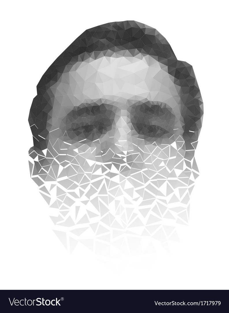 Polygonal face of a man crumbling to pieces vector | Price: 1 Credit (USD $1)