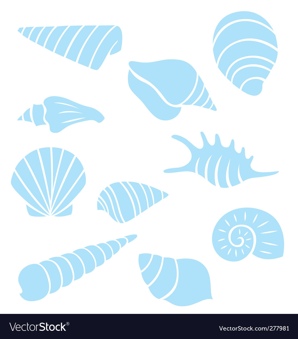 Sea shell collection vector | Price: 1 Credit (USD $1)
