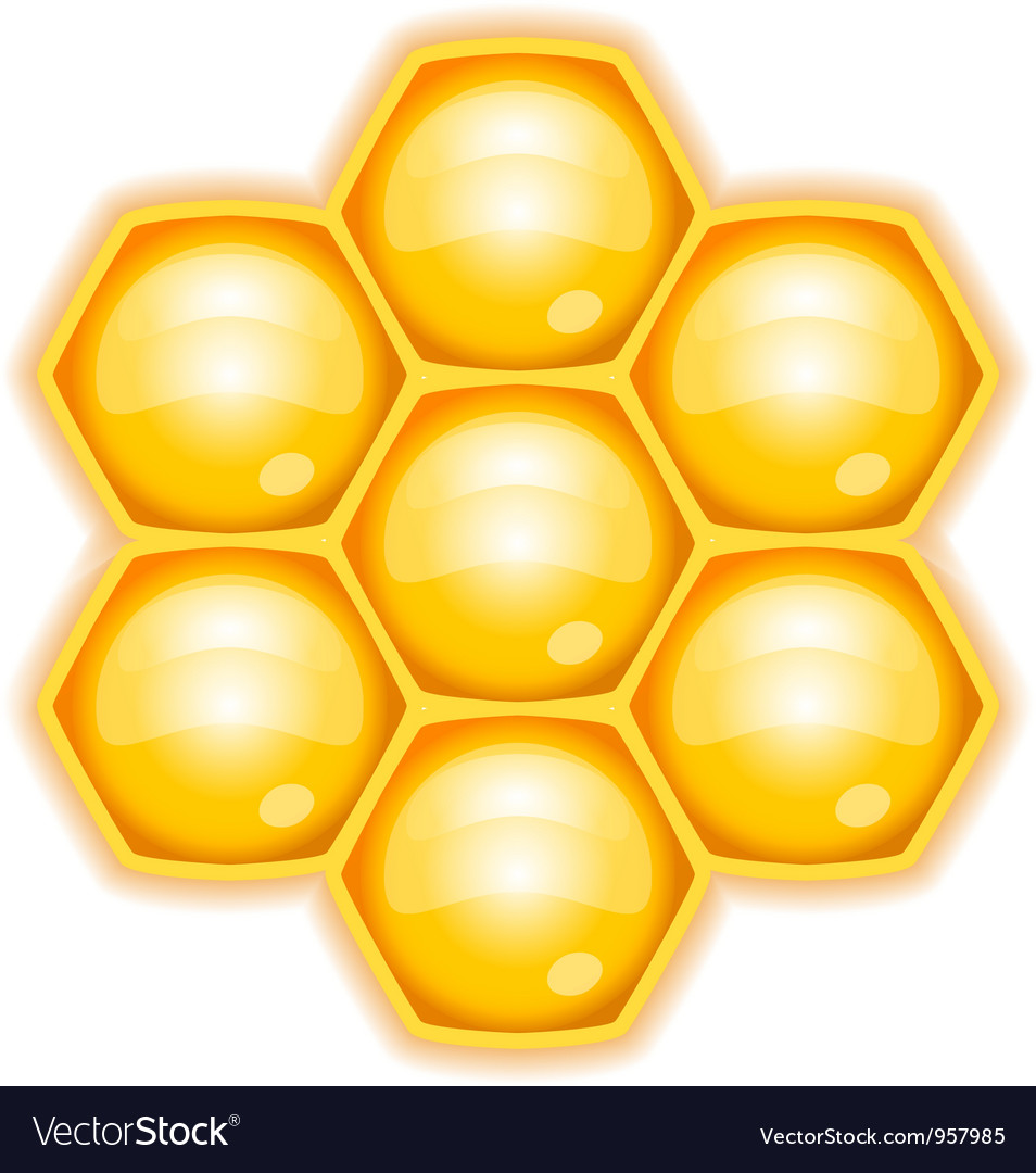 Honeycomb vector | Price: 1 Credit (USD $1)