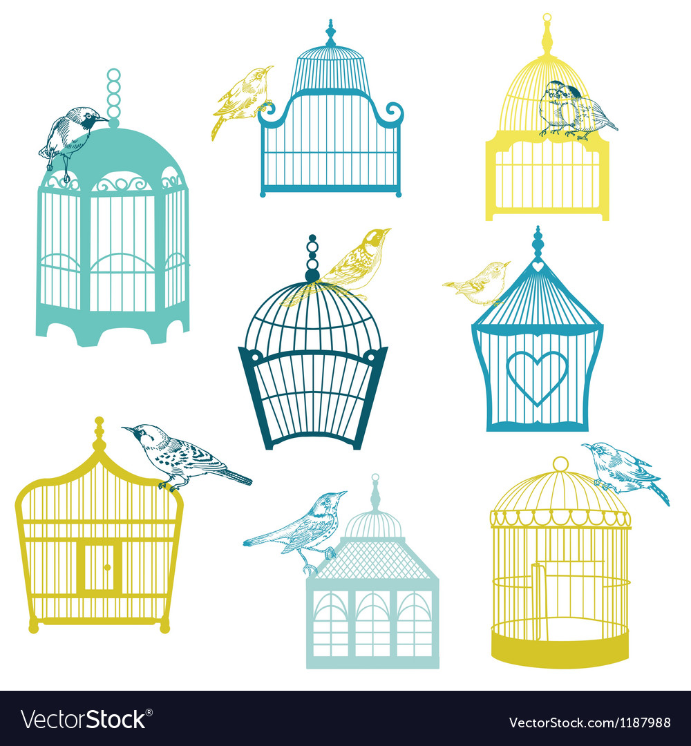 Birds and birdcages collection vector | Price: 1 Credit (USD $1)