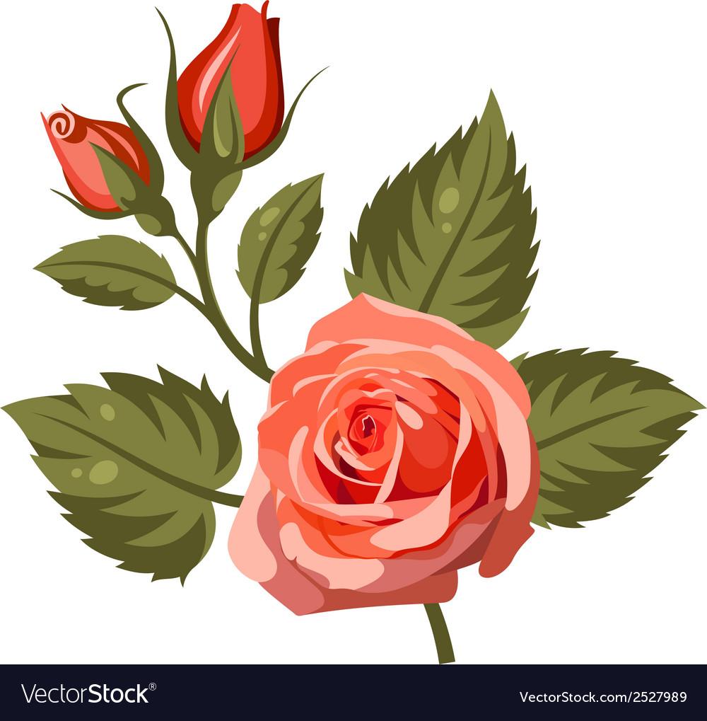 Flowers 4 vector | Price: 1 Credit (USD $1)