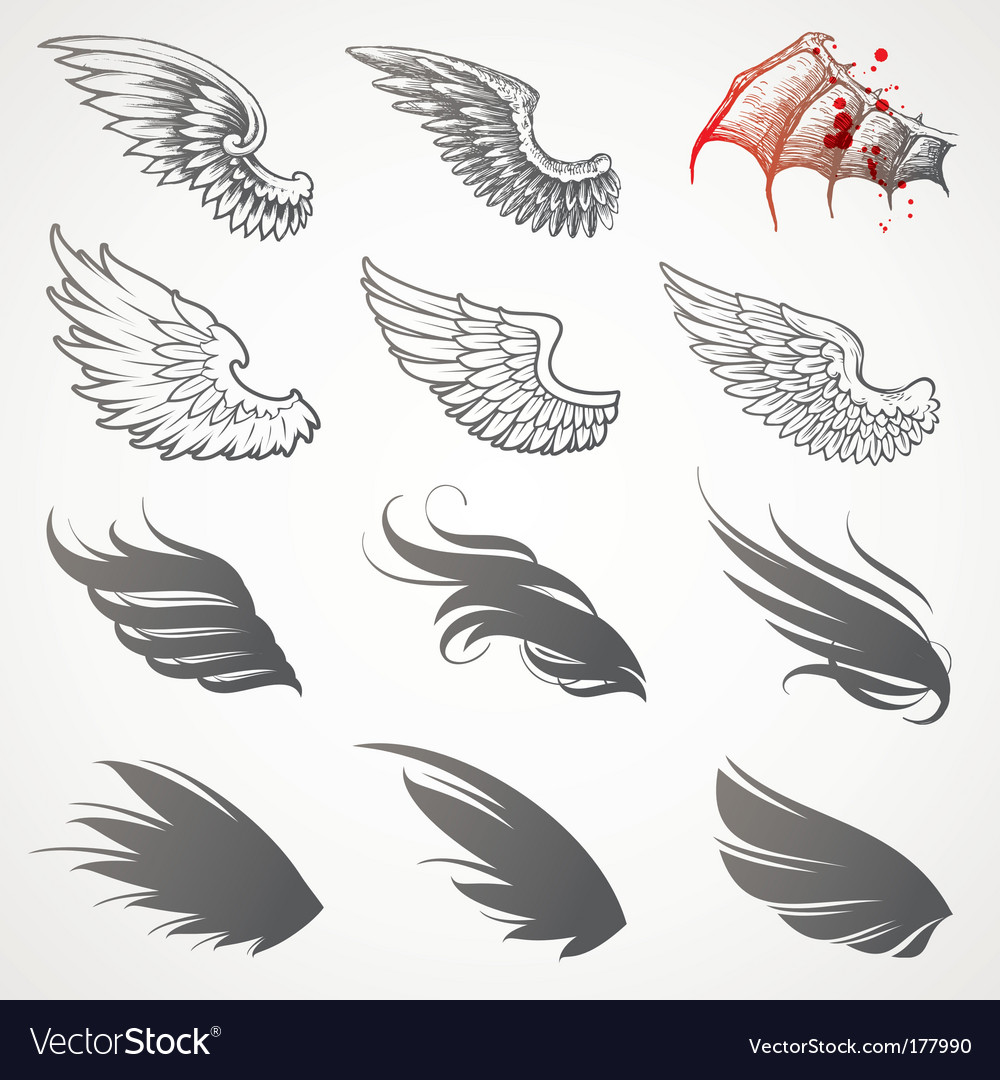 Set of wings vector | Price: 1 Credit (USD $1)
