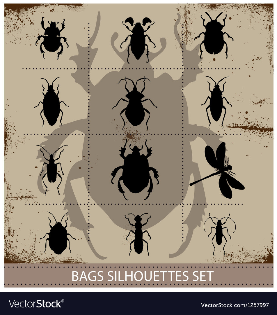Insect and bags silhouettes sign black color vector | Price: 1 Credit (USD $1)