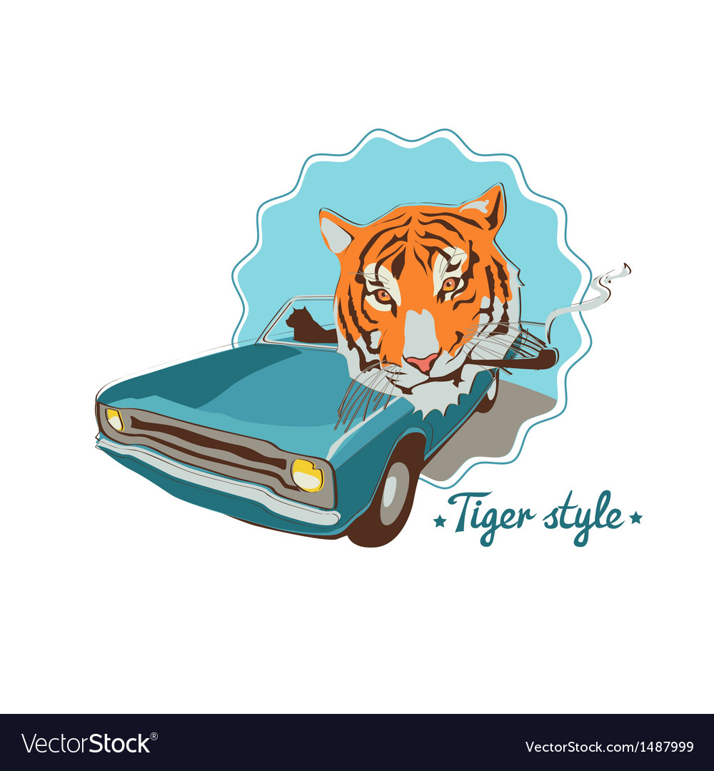 Smoking tiger portret in blue retro car vector   Price: 1 Credit (USD $1)