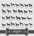 Dogs set - small breeds collection 01 vector