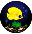 Tropical yellow fish is swimming under water vector