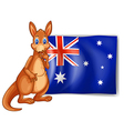 A kangaroo beside an australian flag vector