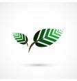 Geometrical leaves vector