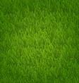 Green grass field nature background vector