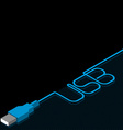 Usb cable and plug with inscription on black vector