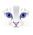 Close up of cat face vector