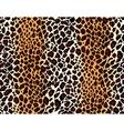 Seamless jaguar skin pattern vector