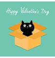 Cat inside opened cardboard package box happy vector