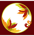 Abstract autumn leaves vector