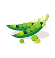 Icon bean vector