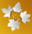 Autumn abstract white leaves vector