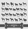 Dogs set - small breeds collection 02 vector