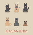 Set of belgian dogs vector