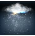 Cloud with rain and a lightning bolt vector