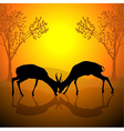 Fighting antelopes vector